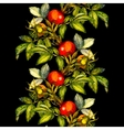 Rosehip seamless pattern border on black vector image