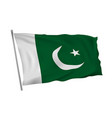 waving in the wind flag of pakistan on pole vector image vector image