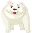 a polar bear cartoon character vector image vector image