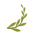 branch olive cartoon vector image