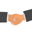 business handshake on white background vector image vector image
