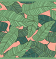 composition of green palm banana leaf pattern vector image vector image