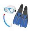 diving essentials vector image vector image