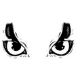 drawing of the eyes owl on white background vector image vector image