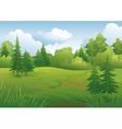 Landscape summer forest