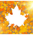 maple leaves white frame with copy space eps 10 vector image