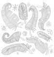 set of feathers and stars vector image vector image