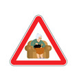 attention grandmother caution old woman and cat vector image vector image