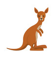 cartoon kangaroo icon vector image