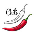 chili drawing icon vector image vector image