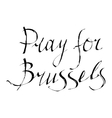 Pray for Brussels vector image vector image