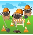 Three dogs builders plant a tree