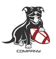 dog pit bull with ball logo vector image vector image