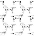 seamless pattern with hand drawn labrador vector image vector image