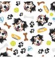 smiling dog australian shepherd vector image vector image