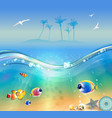 tropical beach underwater and wildlife vector image