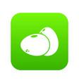 eggs icon green vector image vector image