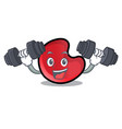 fitness candy moon character cartoon vector image
