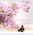 floral romantic background with lilac flowers vector image