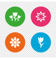 flowers icons bouquet of roses symbol vector image