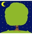Green tree on meadow moon is shining vector image vector image