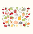 set fruits and berries vector image