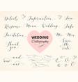 wedding hand written calligraphy set isolated on vector image vector image