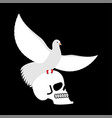 white pigeon and skull dove and skeleton head vector image vector image