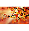 Bright colorful leaves on the branches vector image