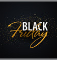 black friday sale calligraphic banner vector image vector image