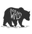 born wild silhouette grizzly bear on grunge vector image vector image