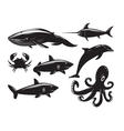 Collection of sea animals isolated on white vector image
