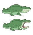 crocodile alligator vector image