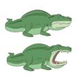 crocodile alligator vector image vector image