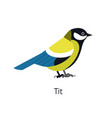 great tit isolated on white background cute funny vector image vector image