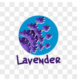 lavender flower on transparent background vector image