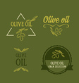 Olive oil design concept Great selection