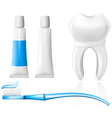 tooth and dental hygiene equipment vector image vector image
