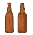 bottles beer in engraving style design element vector image vector image