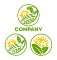 eco farm logo vector image