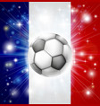france soccer flag vector image vector image