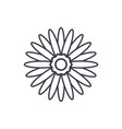 gerbera flower line icon concept gerbera flower vector image vector image