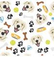 smiling dog golden retriever vector image vector image