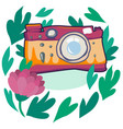 camera with flowers and plants vector image