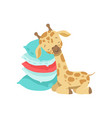 cute little giraffe sleeping on a stack of pillows vector image