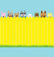 cute pets background vector image vector image