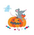 cute rat sit on pumpkin celebrate vector image