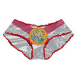 florida flag knickers vector image vector image