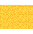 pattern made of orange slices vector image vector image