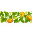 pumpkin plant pattern on white background